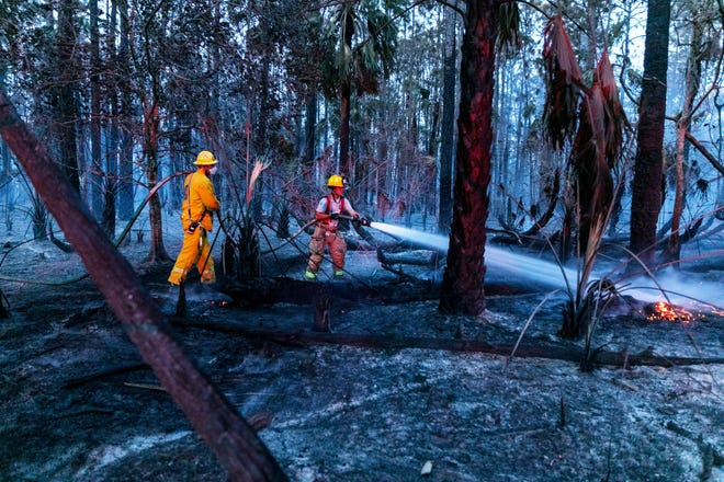 Palm Beach County Fire Rescue Reserve Battalion put out hot spots on a brush fire, near Pioneer Road and west of the Florida Turnpike, April 7, 2018 in suburban West Palm Beach, Florida. (Greg Lovett / The Palm Beach Post)