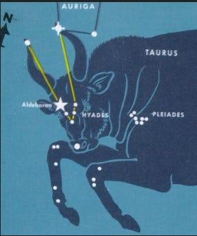 The constellation Taurus the Bull