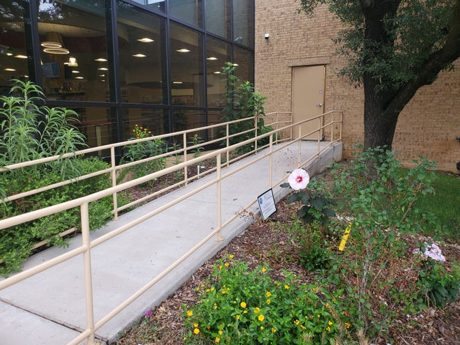 The Sherman Public Library has been recognized as a monarch butterfly way station.