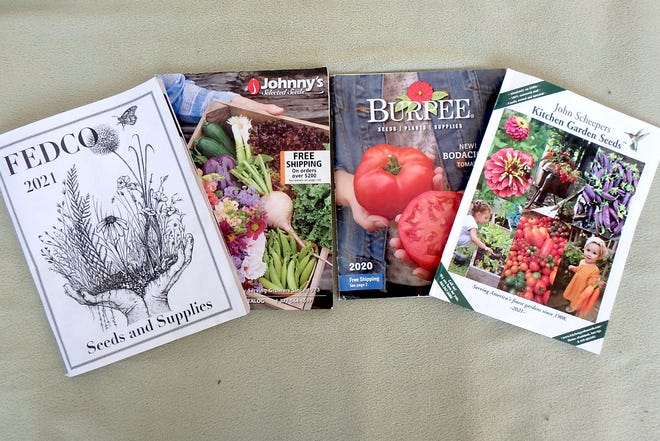 Seed catalogs are great fun to study in the dead of winter. Don't wait too long to place your orders.