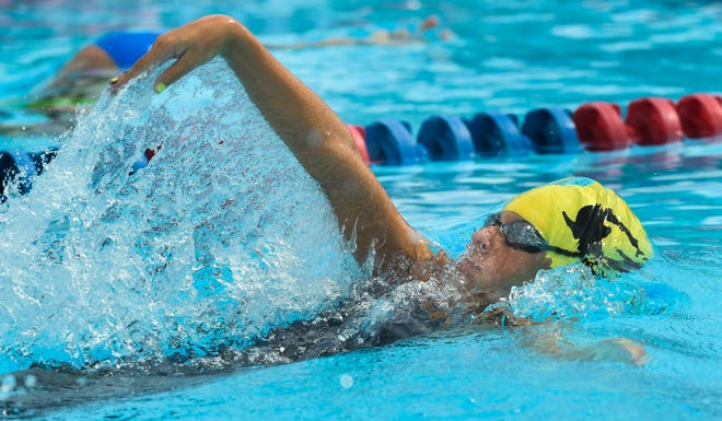 Cardinal Mooney's Michaela Mattes finished first at the Class 1A state meet last season in the 200 individual medley and 500 freestyle.