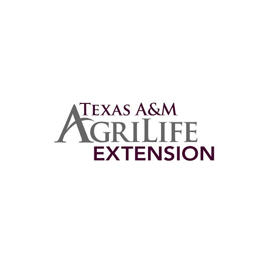 Texas A&M Agrilife Extension is conducting the TexasSpeaks statewide online survey that allows Texans to point out strengths and needs of communities.