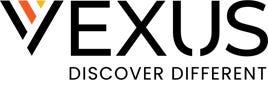Vexus Fiber logo