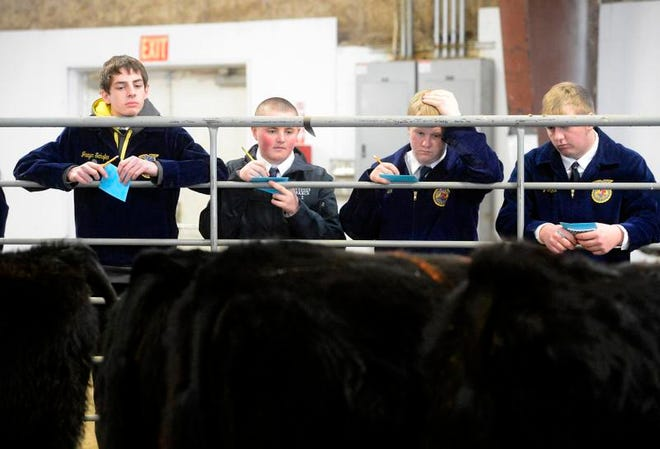 The Junior Agriculture Loan Program offers Montana farm and ranch youth a chance to build their own business and financial literacy.