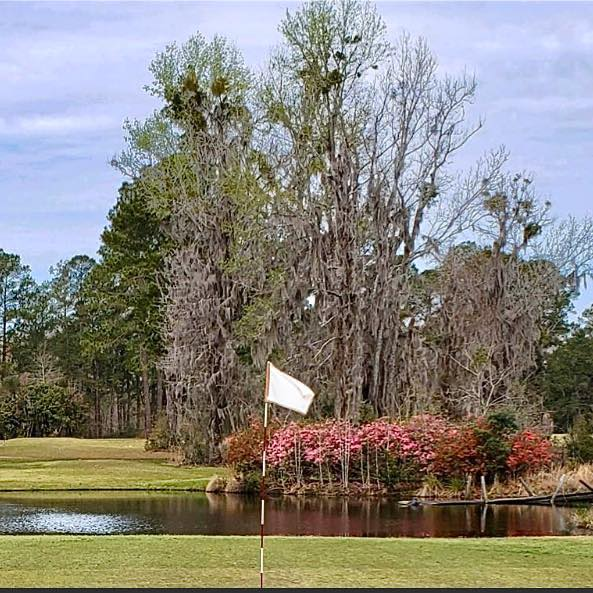 Sergeant Jasper Country Club has new ownership, but it will still be open to the public. The Congaree Foundation recently acquired the nine-hole golf course in Ridgeland.