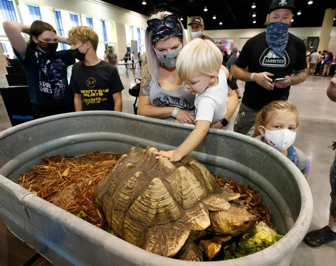 The National Reptile Breeders convention will be returning to the Ocean Center in August. It's among the recent bookings confirmed by Ocean Center director Tim Riddle at Friday's Volusia County Tourist Development Council meeting.