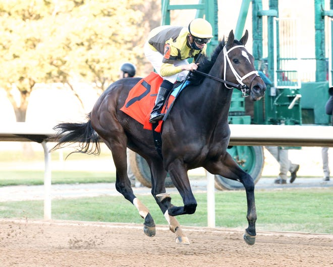 Caddo River, Smarty Jones Stakes winner at Oaklawn