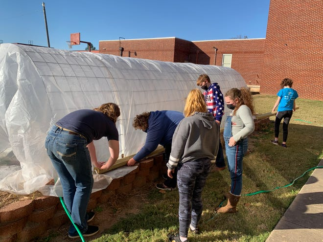 Charleston Middle School students work on a hoop tunnel they use to grow strawberries. The school recently received a $500 grant from the Arkansas Department of Agriculture to expand the program.