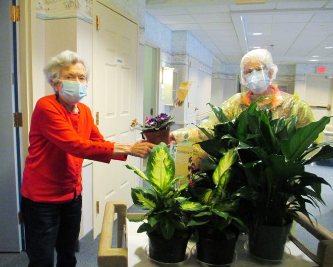Florence Lippman, a resident of Seashore Gardens Living Center, receives a pot of beautiful flowers. The plant she chose was donated as part of the Tu B'Shevat Mitzvah Project.