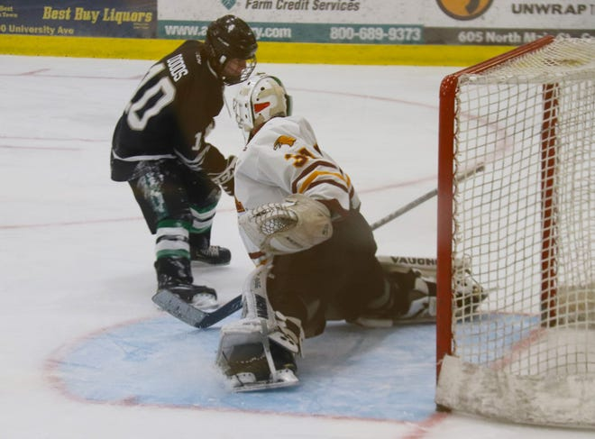 Jake Sumner makes a save against Williston State on Jan. 29. Sumner stopped 33 shots in the Golden Eagles' 7-3 loss to the Tetons Saturday.