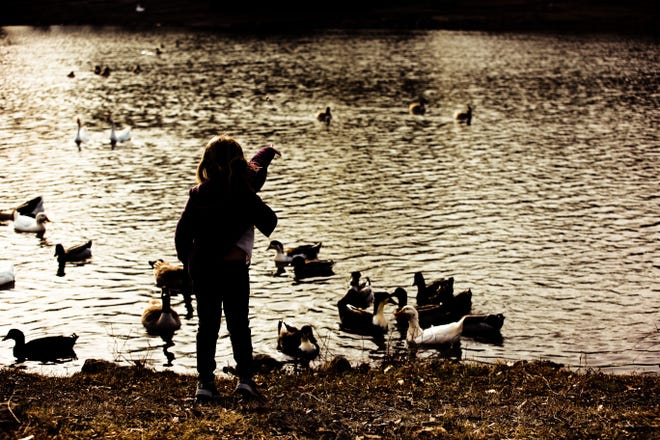 A young girl makes some feathered friends as she tosses treats to the ducks and geese at Jo Allyn Lowe Park in Bartlesville.