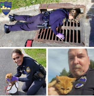 Jacksonville Sheriff's Office Zone 6 Officers Renner and Baker (first names not provided) rescue a tiny orange tabby kitten from a water-filled storm drain Saturday. The kitty has a new home now with Officer Baker, according to the Sheriff's Office.