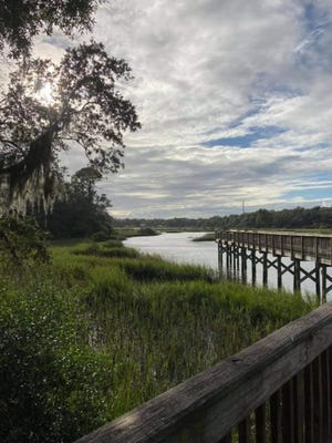 Afternoon view of Moultrie Creek from Vaill Point Park.