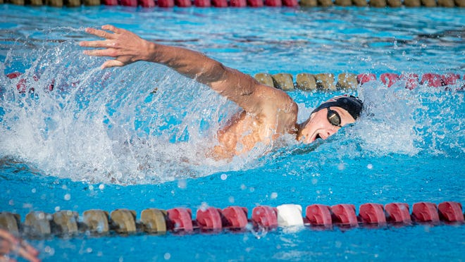 Mason Herbet looks to make a further dent in the FSU swimming record books as his career continues.