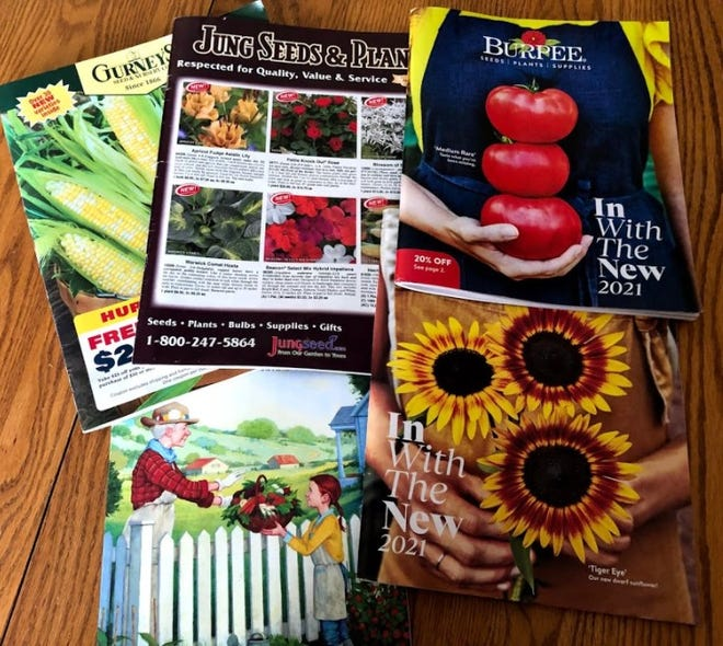 Ordering seeds for the garden helps to lift one's spirits on a wintery day.