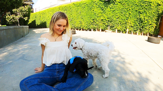 """""""The Good Place"""" actress Kristen Bell, left, with Java and her dog Frank."""