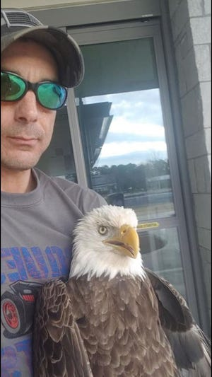 Raptor expert Ben Hill outside a University of Georgia veterinary clinic where he took this wounded bald eagle. [Contributed]