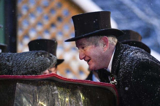 Groundhog Club President Jeff Lundy interacts with Punxsutawney Phil, the weather prognosticating groundhog, during the 135th celebration of Groundhog Day in Punxsutawney, Pa. Tuesday, Feb. 2, 2021. Phil's handlers said that the groundhog has forecast six more weeks of winter weather during this year's event that was held without anyone in attendance due to potential COVID-19 risks.
