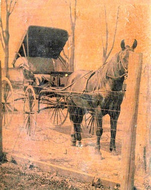 Harless McKinley used this horse and buggy to drive from Chestnut to Lincoln to court Ms. Grace Downey.  The horse's name is Old Bill.
