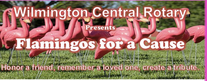 Wilmington Central Rotary's Flamingos for a Cause project.