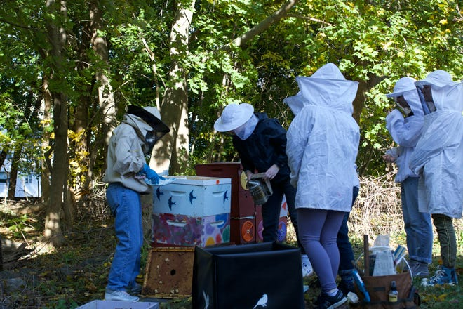 Members of the Lexington High School Bee Club inspect a hive with Master Beekeeper Alix Bartsch.