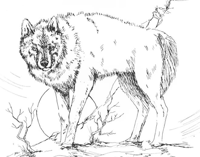 """One of the many sketches by the late Kiowa artist, Robert """"Hantso"""" Cannon."""
