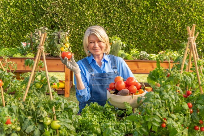 Martha Stewart shows off tomatoes from her garden for Scotts Miracle-Gro's Super Bowl commercial.