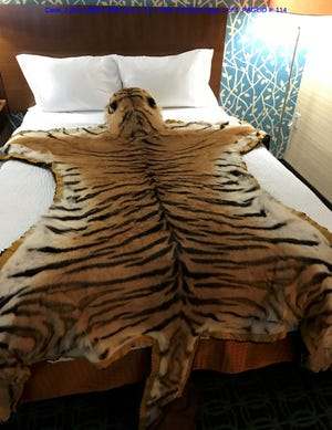 Photo of the tiger skin Ryan Gibbs attempted to purchase, filed as part of his case in federal court in Columbus.