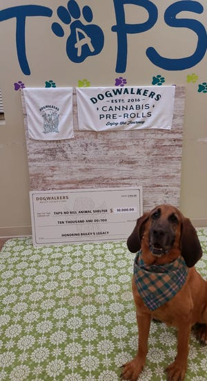 The Tazewell Animal Protection Society was the recent beneficiary of a $10,000 donation, thanks to its partnership with the cannabis packaged goods company Green Thumb Industries, Inc.