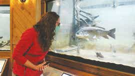 Fish, snakes, turtles, frogs and habitats renewed