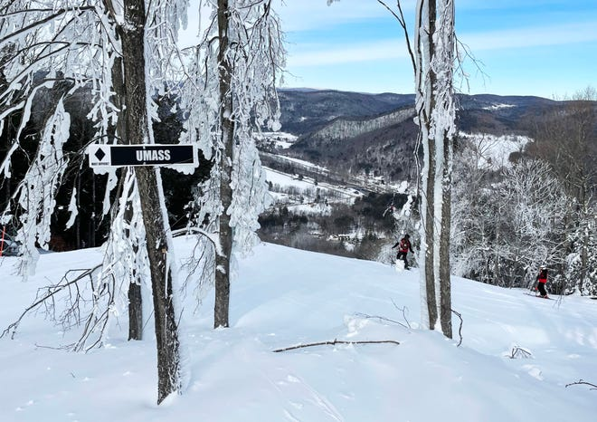 CHARLEMONT - The start of the UMass ski trail at Berkshire East ski area.