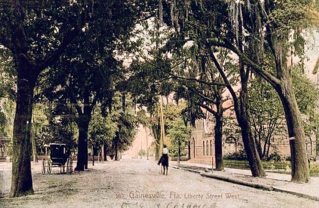 This postcard shows Gainesville's Liberty Street (now University Avenue) before the trees on it were removed.