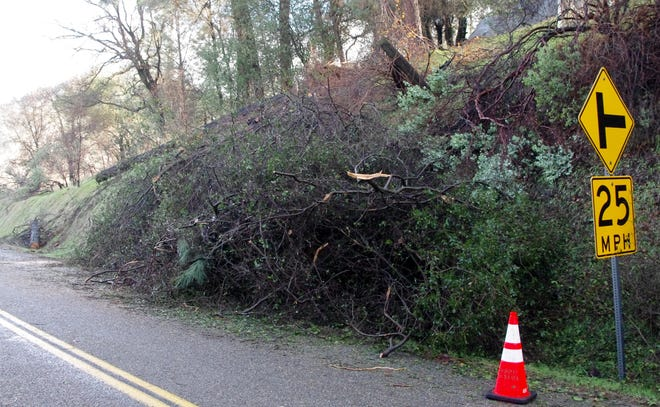 A gray pine along Old Oregon Trail North fell over during a snow storm in the Mountain Gate area in January, knocking out power to a neighborhood on Sweetwater Trail in the Mountain Gate area.