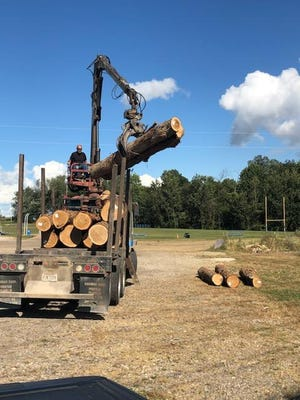 The West Holmes Building and Trades program received a load of about 20 logs, all white oak, from Trico Enterprises last fall and turned them into an 8-foot by 16-foot cabin.