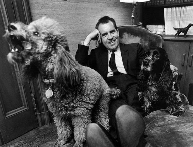 President Nixon and dogs. Checkers is on the right.