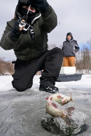 Ice fisherman Christian Gedeon pulls a fish out of Shadow Lake in the Cleveland suburb of Solon on Jan. 29.