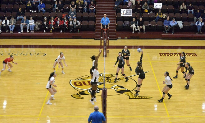 The Gannon volleyball team, right, hosts Edinboro at the Hammermill Center in a PSAC quarterfinal match on Nov. 19, 2019.