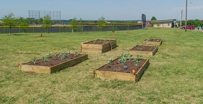 Raised-bed gardening can increase yield, conserve water and cut down on weeds. It presents benefits for people with physical limitations as well.