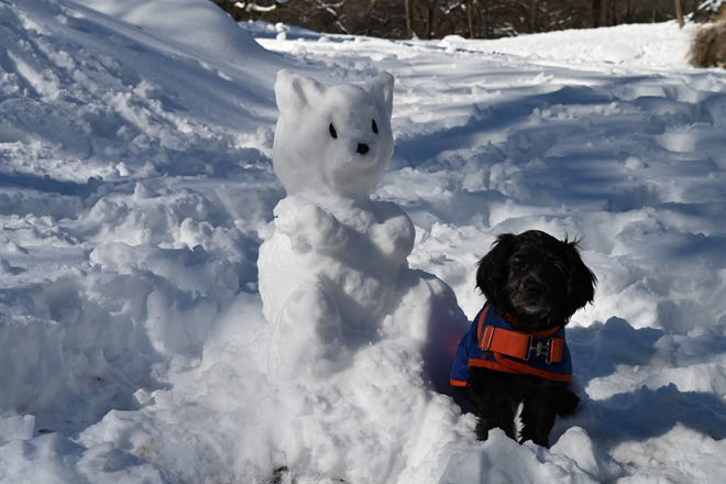 A dog sits near a snow animal in Central Park in New York City on Feb. 4, 2021.