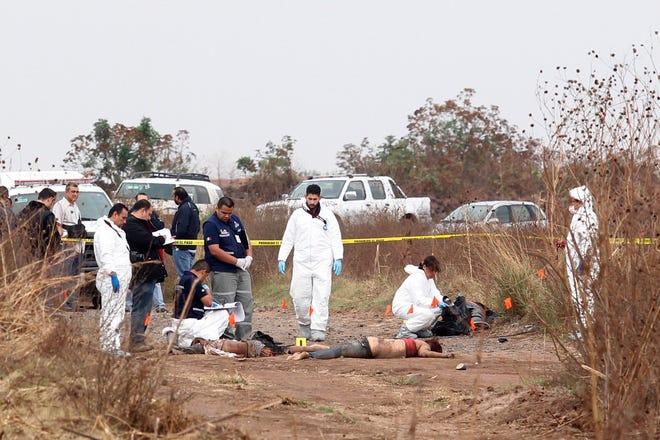 Peritos forenses reúnen evidencias en la zona donde fueron localizados cuerpos calcinados.