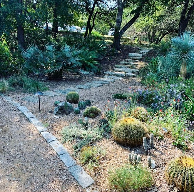 Originally designed by landscape architects Plant Driven Designs, the Water Wise Garden in front of Rollingwood City Hall is a one-of-a-kind, educational space for the community.