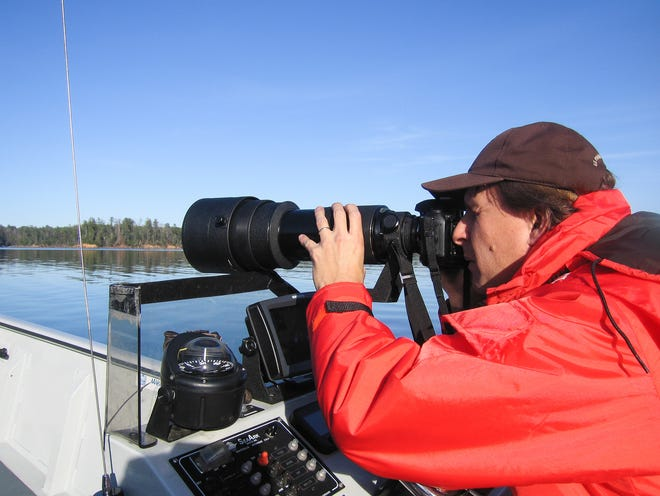 Fish and Wildlife Service biologist Mark Cantrell photographs a bald eagle on Lake James