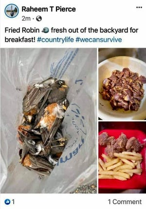 This Jan. 22 Facebook post showed Ibervile Parish Councilman Raheem Pierce with a bag of dead robins, along with another picture of him cooking them for breakfast.