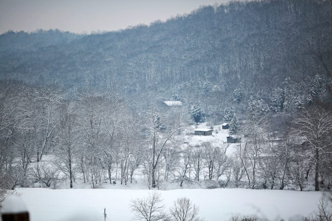 Snow covers tree branches in Union, Ky., on Tuesday, Feb. 9, 2021. More than eight inches of snow fell in some parts of the region overnight, accumulating to the most snowfall the area has seen since 2008.