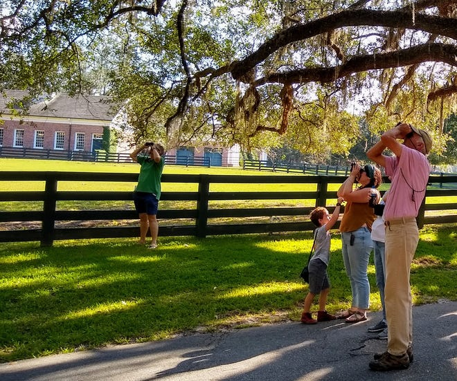 On Saturday, Feb.13, from 10 a.m.-2 p.m., you can visit Pebble Hill Plantation for the 24th annual Great Backyard Bird Count