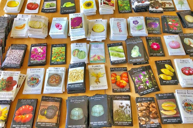 As unusual heirloom and native seeds become increasingly popular, Rowen White is encouraging more seed companies to acknowledge the contributions Native American communities have made to seed development and seek ways to pay them back through reciprocal relationships. A member of the Mohawk tribe, White is an avid seed saver and founder of the Indigenous Seed Keeping Network.