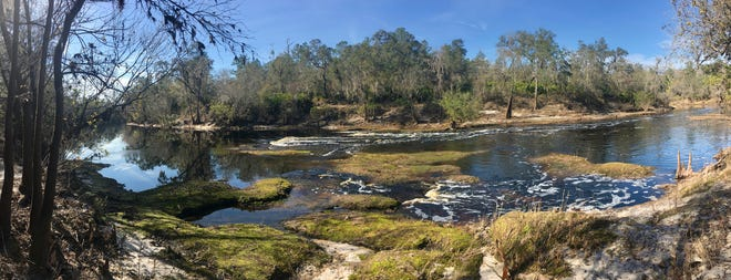 The Suwannee River meanders through Big Shoals State Park before tumbling down to create Class III rapids. It's just one example of the unexpected natural beauty found in Florida.