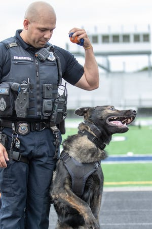 Twinsburg K-9 officer Yamil Encarnacion works with his K-9 partner Caesar. Encarnacion will be honored by The American Red Cross of Greater Akron and the Mahoning Valley at the 25th annual Acts of Courage Awards. He helped rescue a trapped child from a totaled vehicle.