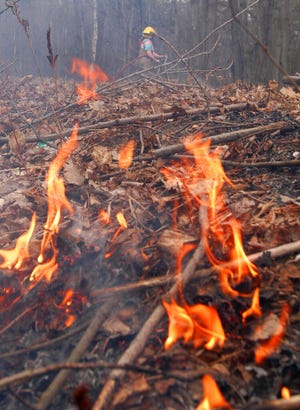 Spring brush fires consume wind- and sun-dried fuel on forest floors and grasslands.  (AP Photo/Rob Swanson)