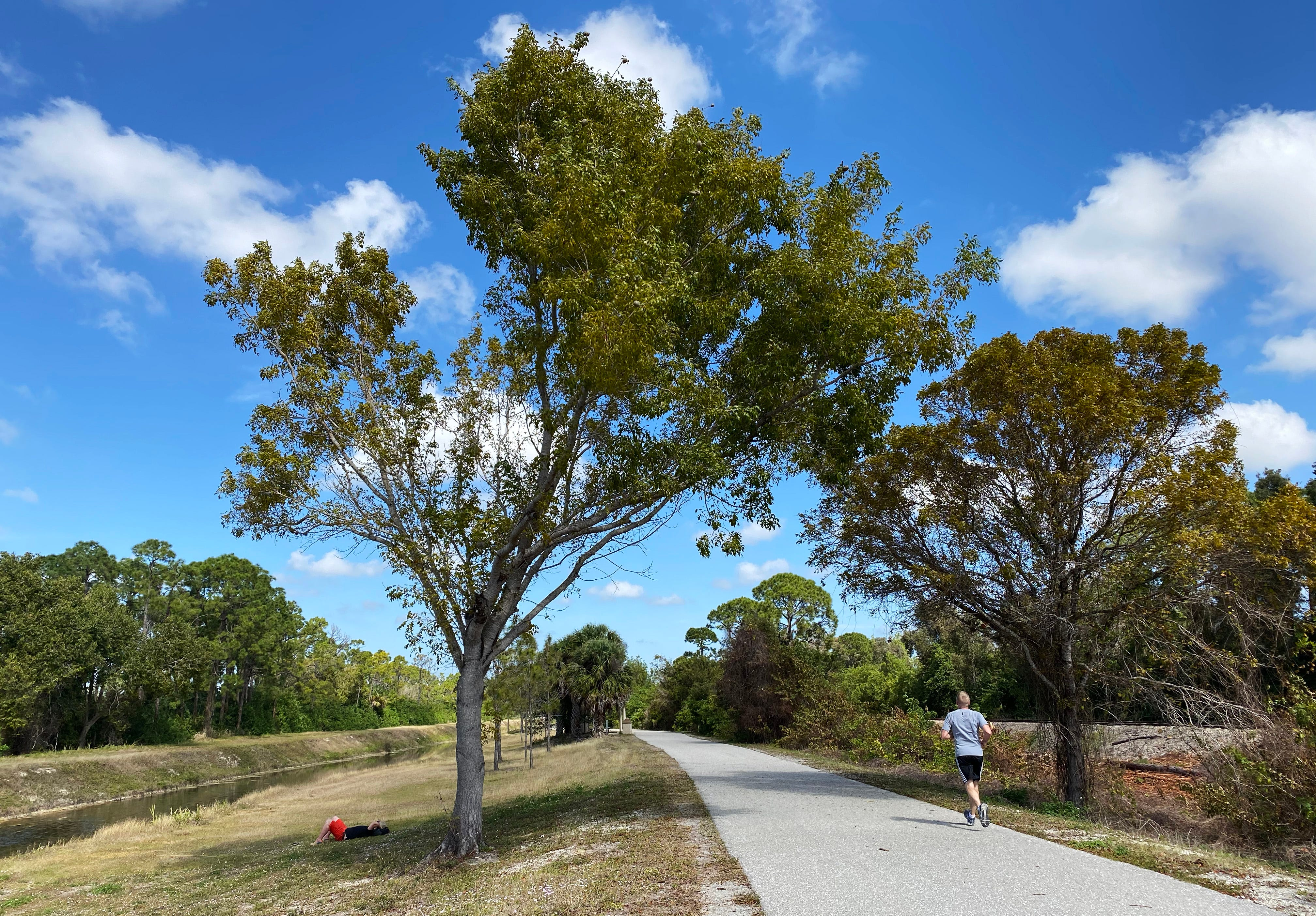 In the Know: John Yarbrough Linear Park to get trailhead in near future, expansion later 3